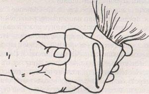 Укладывание шерсти в папильотки