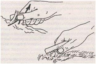 Правильное пользование ножом для стриппинга